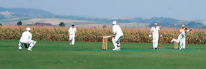 Cricket in Seebarn 2